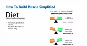 how to build muscles - calories equation